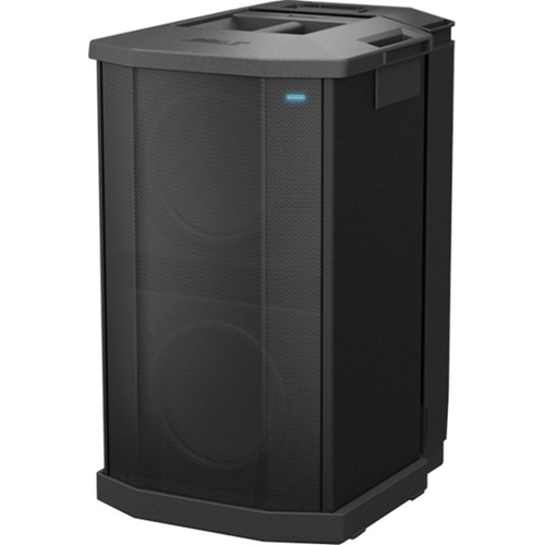 Bose Subwoofer System - 1000 W RMS