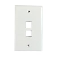 Wall Plate, 2 Port